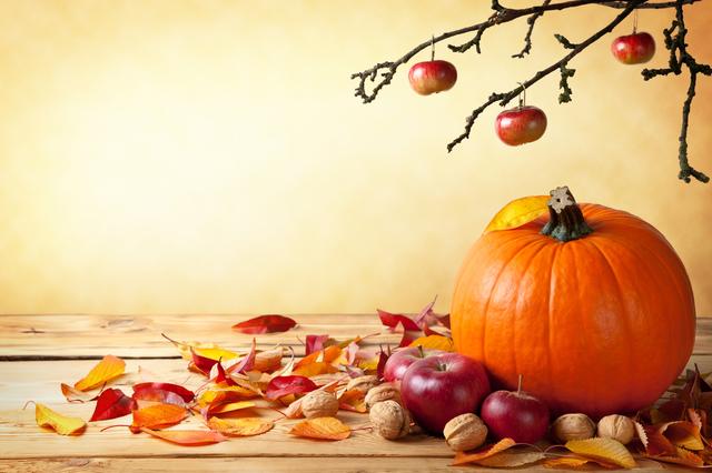 季語の挨拶10月下旬の挨拶やスピーチに使える言葉の例文や手紙・メールに使える文例